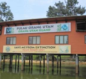 Bukit Merah Orang Utan Island Foundation