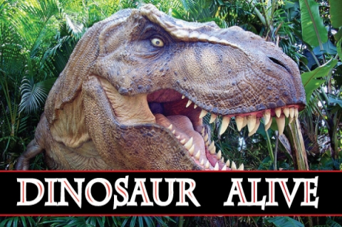 Dinosaurs Alive Water Theme Park Dino Alive Water Theme Park