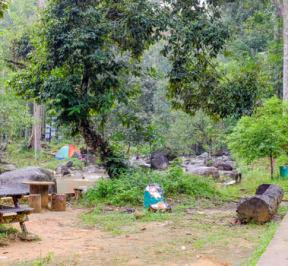 Hutan Lipur Sungai Bantang