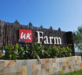 UK Farm Resort