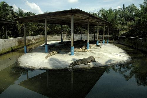 Zoo Negeri Johor 1