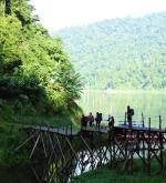 Belum Forest Reserve