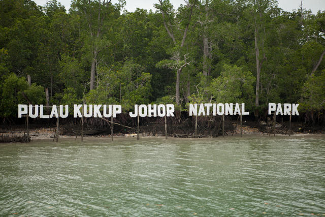 Image result for Pulau Kukup -- Nature lovers Paradise