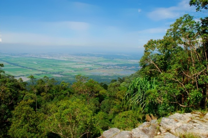 Mount Jerai 3