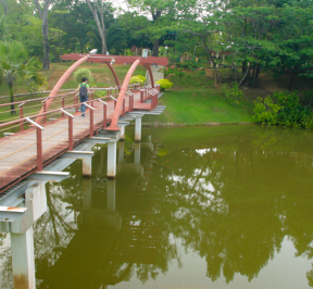 Labuan Botanical Garden 1